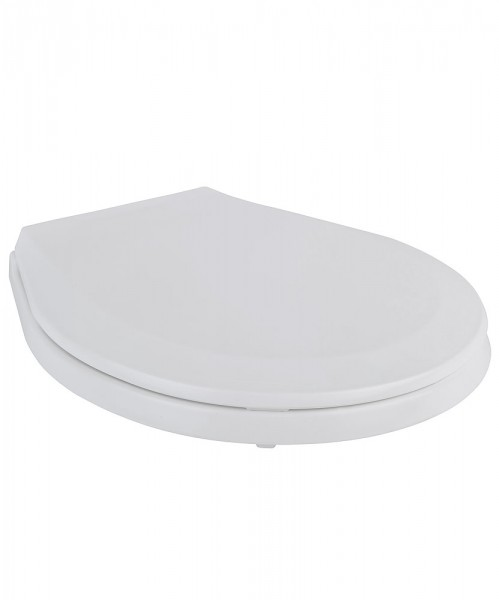 Toilet Seat and Lid