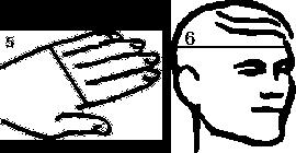 Infografik Konfektionsmasse Hand und Kopf