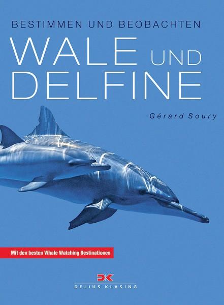 Wale und Delfine 2011