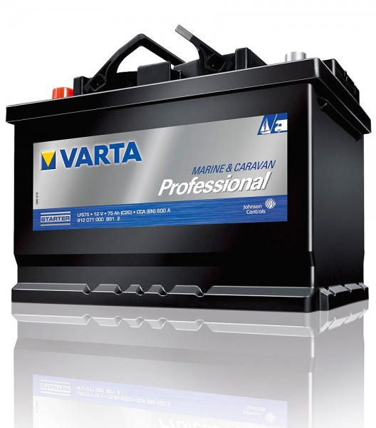 Varta Professional Starter LFS